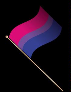 drapeau bisexualités